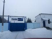 Продается завод в Подмосковье (рыбный завод)